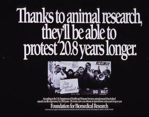 Investigación animal, experimentos animales