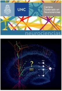 curso_doctorado_neurociencia_computacional_teorica
